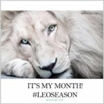 Cute Leo Season Meme - It's My Month #leoseason