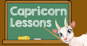 Zodiac Signs Learn From Capricorn