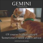 Astrology Memes Gemini Funny Meme Talking