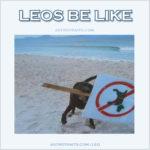 funny leos be like meme - beach