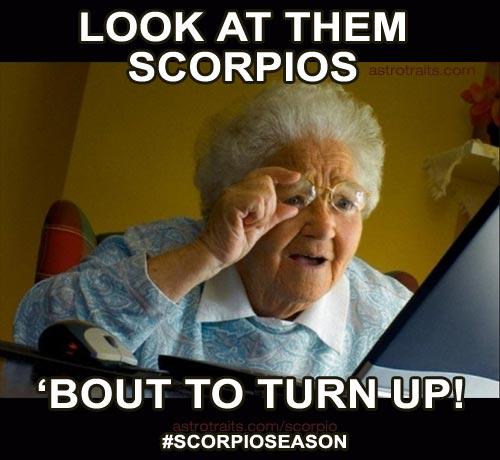 Look at them Scorpios, bout to turn up scorpio zodiac meme