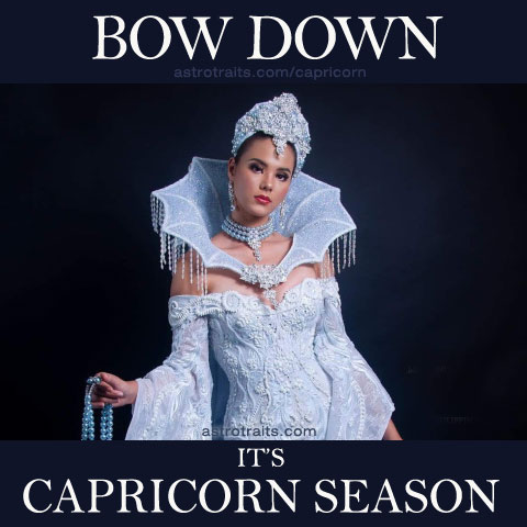 bow down capricorn meme