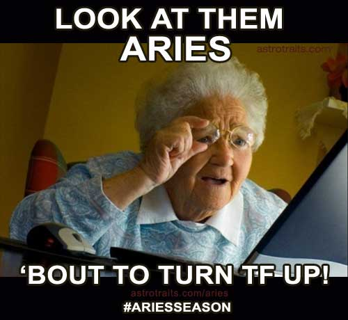look at them aries bout to turn tf up