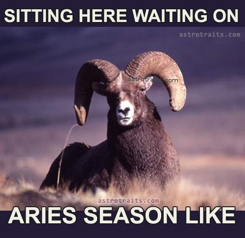 sitting here waiting on aries ram season meme