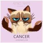 Cancer Grumpy Cat