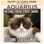 Aquarius Meme - Grumpy Cat