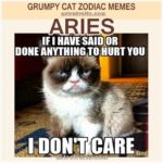 Aries Zodiac Meme - Grumpy Cat