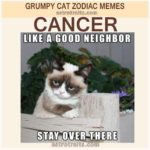 Cancer Zodiac Meme - Grumpy Cat