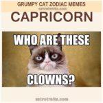 Capricorn Astro Meme - Grumpy Cat
