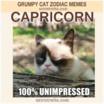 Capricorn Zodiac Sign Meme - Grumpy Cat