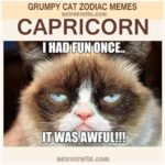 Capricorn Zodiac Meme - Grumpy Cat
