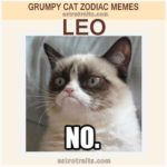 Leo Zodiac Sign Meme - Grumpy Cat