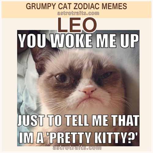 Leo Meme - Grumpy Cat