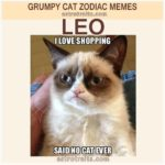 Leo Zodiac Meme - Grumpy Cat