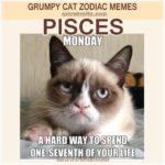 Pisces Zodiac Meme - Grumpy Cat