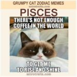 Pisces Meme - Grumpy Cat