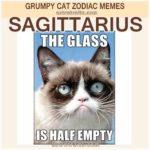 Sagittarius Meme 3 Grumpy Cat