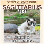 Sagittarius Meme - Grumpy Cat