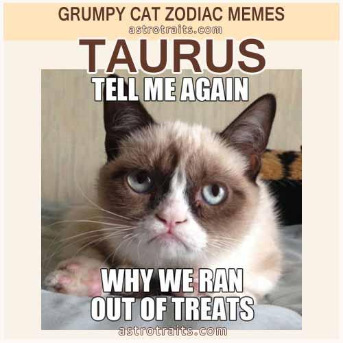 Taurus Meme 2 - Grumpy Cat
