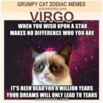 Virgo Meme 2 - Grumpy Cat