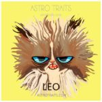 Leo Grumpy Cat