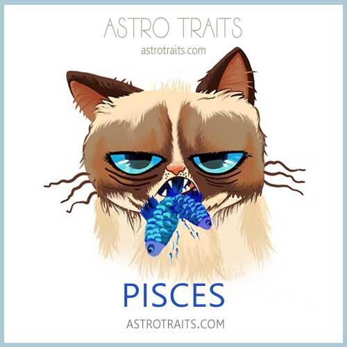 Zodiac Memes Grumpy Cat Edition