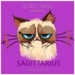 Sagittarius Grumpy Cat